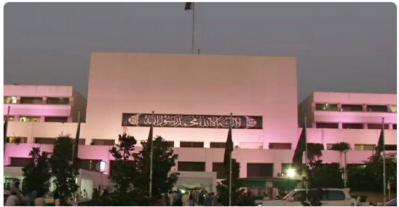 Pakistan Parliament House goes pink today