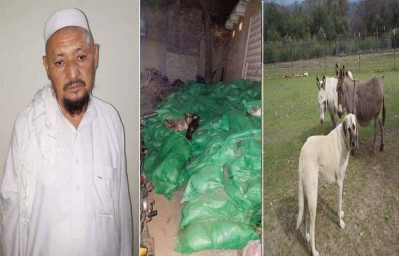 After Lahore, Donkeys and Dogs meat being served in Karachi