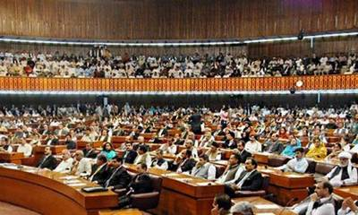 National Assembly adopts two resolutions in the house unanimously