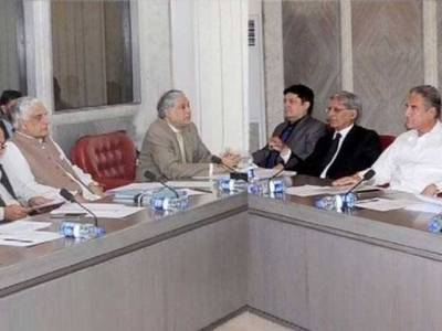 Parliamentary committee meetings for TORs wastage of time: Shah Mahmood