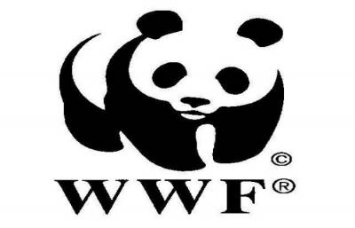 WWF hails Punjab govt for hefty allocation for Wild Life