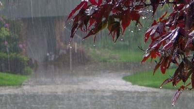 Monsoon: Weather Forecast for the Week