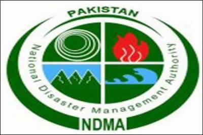 Ten priority areas identified under NDMP in strategic plan