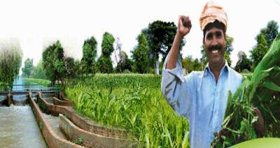 Punjab govt farmers cooperatives scheme to boost agriculture sector