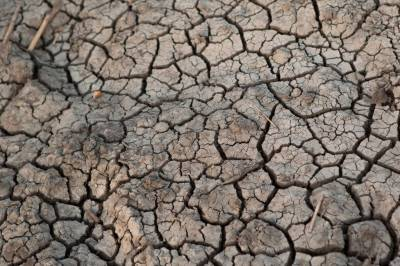 UN warns of more heatwave deaths due climate change
