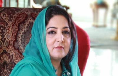 Pakistan Cyber Crime bill passed by Parliament not Government: Anusha