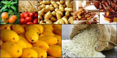 Pakistan Agricultural Exports to be enhanced with US assistance