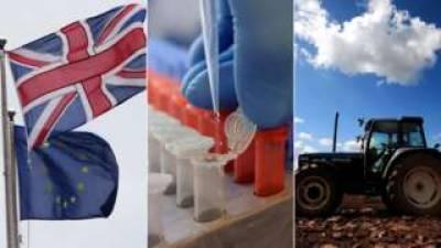 UK plans for Post Brexit economic policies