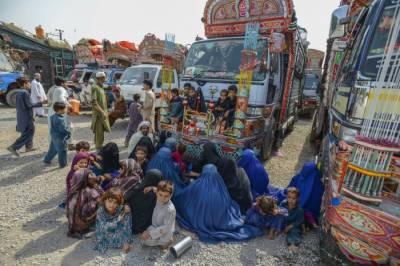 Afghan refugees return: UNHCR report