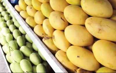 Pakistani mango festival in Ankara