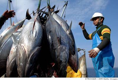 KPK Fisheries Department initiatives
