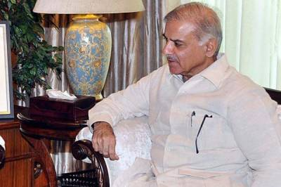 German experts meet CM Shehbaz Sharif