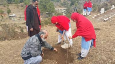 Billion tree tsunami campaign of KPK government expanded