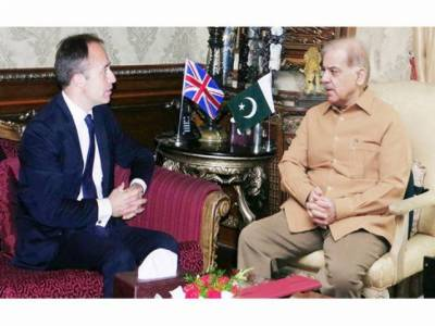 British High Commissioner calls on CM Shehbaz Sharif
