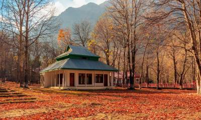 PTDC business booms by 35% in 2016 due improved security scenario