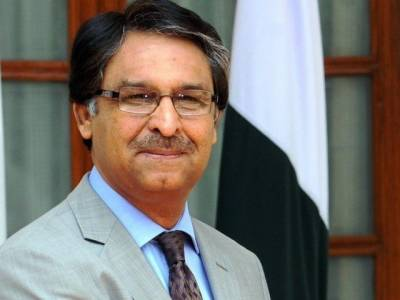 Pakistani Americans to actively participate in US elections: Ambassador