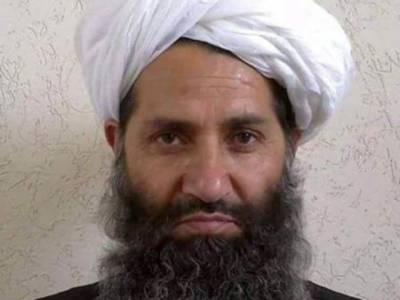 Afghan Taliban and Afghanistan government secret talks revealed