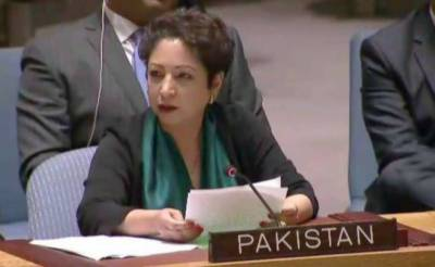 Maleeha Lodhi stands for Kashmiris in UN Security Council