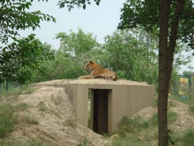 `Wild life park' worth Rs. 4 billion near motorway