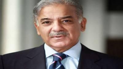 Lahore High Court contempt of court proceedings against CM Shehbaz Sharif