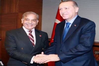 CM Shehbaz Sharif meets Turkish President Erdogan