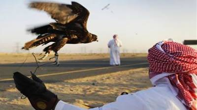 KPK government bans Qatari Sheikh from hunting Houbara Bustard