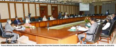 Economic Coordination Committee meeting vital decisions on December 15