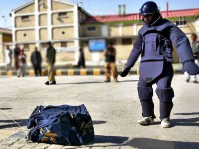 Bomb Disposal Squad foil terror bid