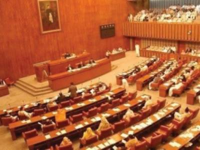 NAP review demand echoes in Senate