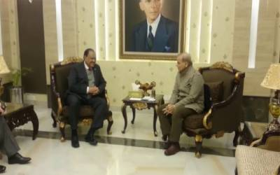 CM Punjab discusses public welfare matters with President