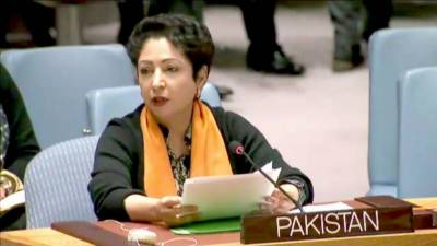 Sustainable peace is not possible without setting international disputes: Maleeah Lodhi
