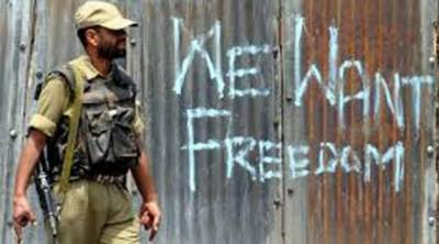 British MPs stand for grant of right to self-determination to Kashmiris