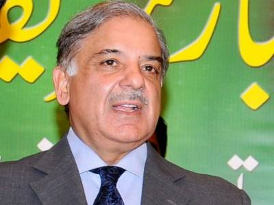 CM Shehbaz Sharif disqualification reference filed