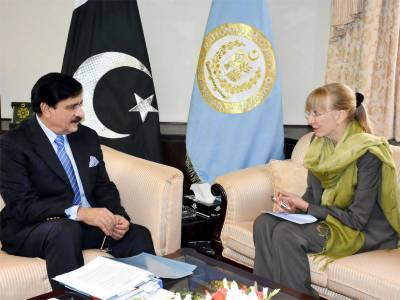NSA Nasser Janjua meets German Ambassador
