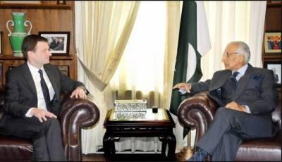 Pakistan-US relations to emrge at higher levels: Ambassador David Hale