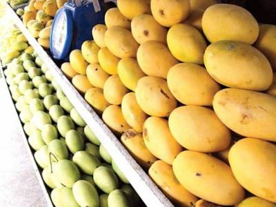 Pakistan's mangoes to make entry into US