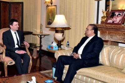 US Ambassador calls on Asif Zardari
