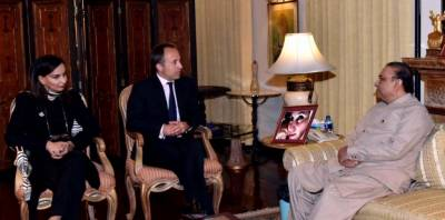 British High Commissioner calls on Asif Zardari