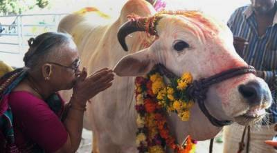 Muslim man dies after attack by cow vigilantes in India