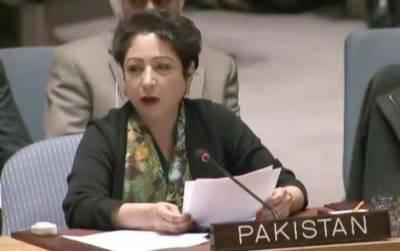Pakistan presents own formula for UN Security Council expansion
