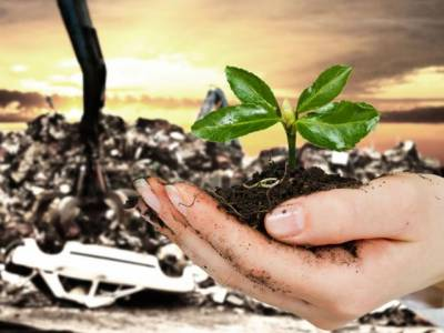 Punjab govt plans to generate energy from agriculture waste