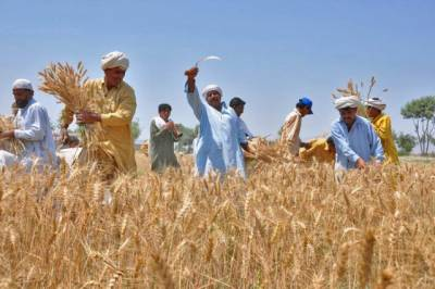 Punjab govt to provide climate smart technology to farmers