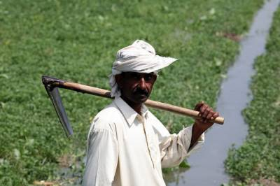 Punjab govt making all out efforts for welfare of farmers: CM