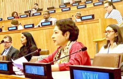 Pakistan asks for democratic reforms in UN Security Council