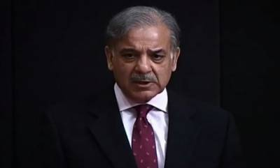Panama Case summons CM Shahbaz Sharif with record on June 17