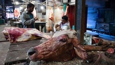 Hindu extremist mob hits 6 Muslims in Delhi over buffalo calves