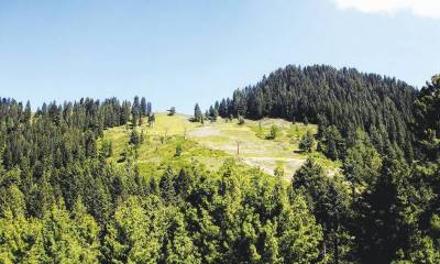 KP government spending Rs 2.7 billion on forest development