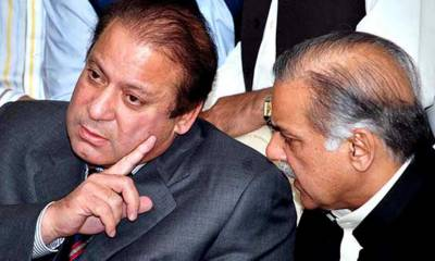 Former PM Nawaz Sharif sidelined Shahbaz Sharif to become new PM: Times of India