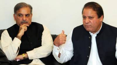 Nawaz Sharif holds one on one meeting with CM Shahbaz Sharif