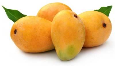 China to import large quantity of Pakistani mangoes